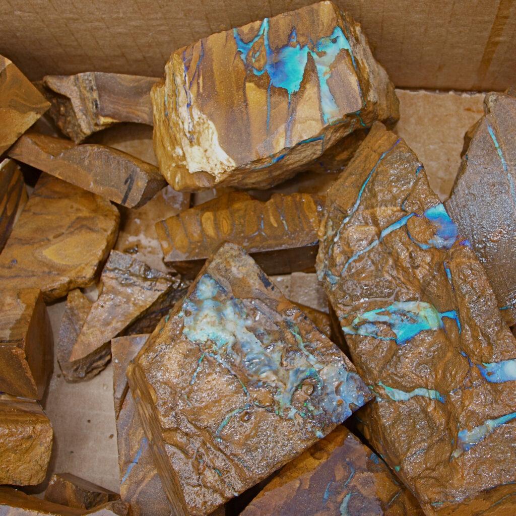 Cut Queensland Boulder Opal